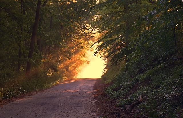 Das Licht, das du in deinem Leben suchst, ist in dir…